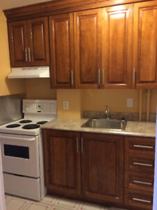 1 Bedroom Apartment on Military Road - Heat included