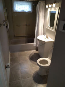 3 Bedroom Home Available for Rent St. John's Newfoundland image 5