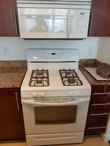 APPLIANCES LIKE NEW!     FRIDGE, GAS STOVE,MICROWAVE,DISHWASHER