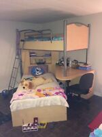 Loft bunk beds! Need gone ASAP! Moving Tuesday!!