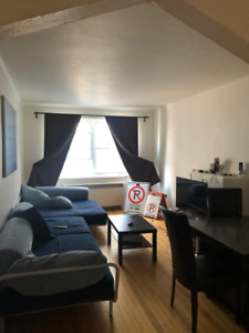 large, sunny 2 bedroom, near Cote Ste Catherine metro - July 1st