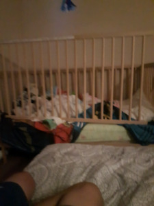 Toddler bed and crib