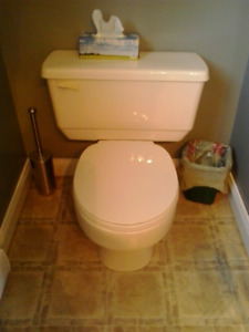 Flush and sink for sale