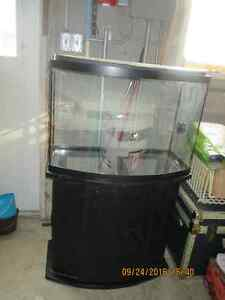 44 gallon fish tank with stand