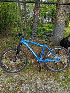 Mint condition Rocky Mountain bike for sale!
