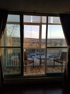Top of the Valley. Executive furnished or unfurnished 1 bedroom Edmonton Edmonton Area image 1