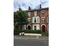 Large double room in luxury professional house - great location!!