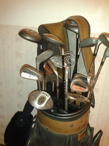 A set of golf clubs in sturdy, nice looking golf bag.