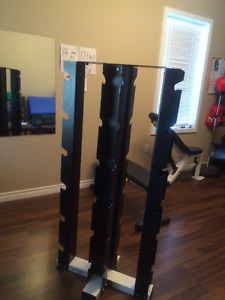 Northern Lights vertical dumbbell stand