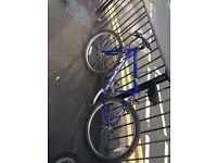 RIDGE bicycle for adult
