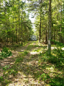 Beautifully treed 2 acre lot with camp. Crafts Cove, Washademoak