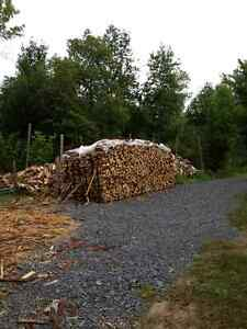DRY SEASONED FIREWOOD,  CHEAP PICK UP PRICE-ODESSA Kingston Kingston Area image 3