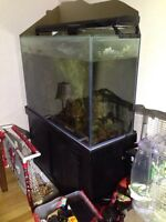 Fish setup. 110 gal. Starfire display, 30 gal sump,