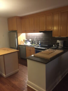 Downtown, All Inclusive, Furnished 2 Bedroom Apartment. Jan 1st
