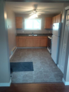 Two Bedroom ground level basement apartment