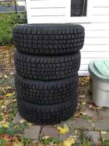 Avalanche Extreme winter tires