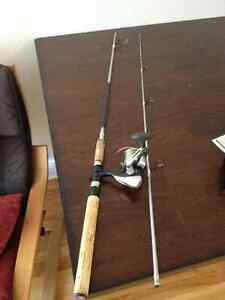 Fishing rod and reel, ready to fish