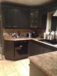 Cabinet Painter Kitchener / Waterloo Kitchener Area image 3