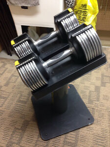 Dumbbell Set Sarnia Sarnia Area image 1