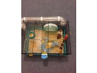 Syrian hamster+cage+toys & food