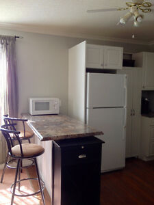 Spacious One Bedroom plus Den $1000 Stratford Kitchener Area image 3