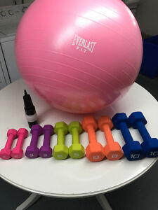 """New 30""""Everlast Fitness Ball with Pump & Cast Iron Dumbbells $80"""