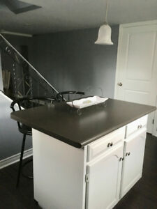 Beautifully furnished 1 bedroom apartment - Avail Nov. 1st!