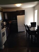 One or two rooms for rent June 1st!