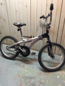 Mongoose Kids Mountain Bike