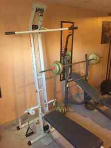 home exercise equipment for sale (clearing room for renovation) Windsor Region Ontario image 1