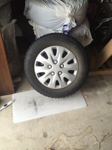 Winter Tires on rims - Altimax
