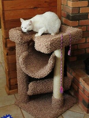 CAT SCRATCH & LOUNGE - FREE SHIPPING IN THE UNITED STATES ONLY
