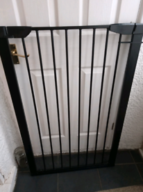 Black tall metal Dog gate pick up only
