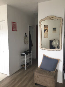 Summer Sublet (one bedroom apartment) in Hamilton- McMaster