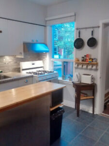SUBLET-SUBWAY-CENTRaL-FRNSHD 1BR +DEN/2nd bdrm -PATIO