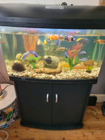 165litre fish tank and cabinet