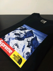 Supreme/The North Face Mountain Tee