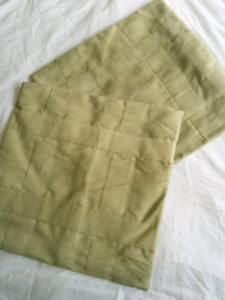 2 Sage Green Microfiber Throw Pillow Cases