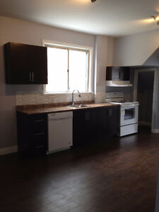 Bright and Clean - St Boniface! Renovated 3-bdrm Apartment