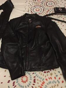 Harley Davidson Items for sale