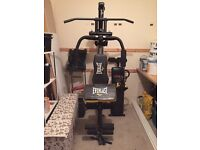 Everlast power tower weights machine multi gym