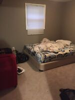 Room for rent in a basement On 17Ave SE !!!!! Available NOW