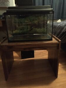 10 Gallon fish tank and stand  St. John's Newfoundland image 1