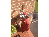 Golf clubs Hippo. 1/2 set. Bargain