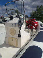 115 hp Evinrude Power Boat