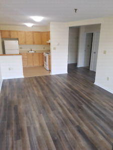 Studio Apt for rent in the Hydrostone area