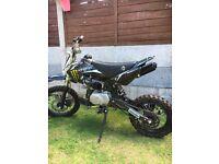Stomp/Welsh pit bike