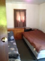 Furnished Room available now! Excellent location!