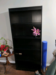 Bookcase and shelves set