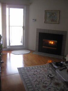 Luxury 2 bedroom apartment at 735 Deveron Crescent, London, Ont. London Ontario image 3